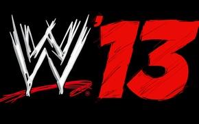 Picture 2013, World Wrestling Entertainment, Titan Sports, wrestling Federation