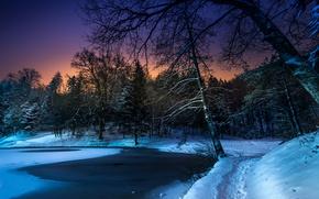 Picture winter, snow, trees, night, pond, Park, path