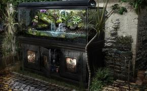 Picture realism, aquarium, plants