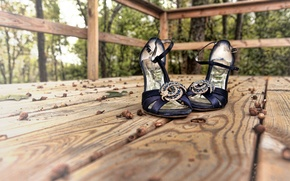 Picture macro, background, shoes