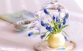 Wallpaper flowers, servirovka, blue, table, Cup