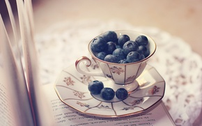Picture berries, Cup, book, page, saucer