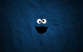Picture blue, fur, mug, cookie Monster