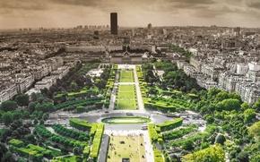 Picture trees, Park, France, Paris, building, horizon, skyline, trees, paris, france, park, buildings, panoramic view of …