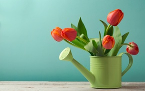 Wallpaper flowers, lake, table, background, red, green, tulips