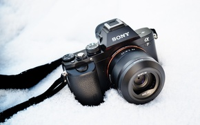 Picture background, camera, Sony A7