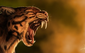 Picture cat, predator, art, mouth, fangs, goldenphoenix100
