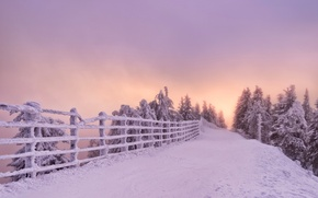 Wallpaper winter, road, snow, trees, sunset, the fence, Romania, Romania, Brasov, Brasov