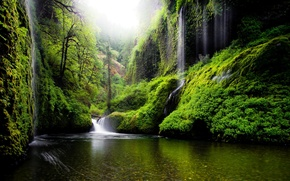 Picture nature, trees, waterfalls, leaves, Oregon, water, greens, river, spring, USA