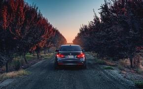 Picture BMW, German, Car, Sunset, 335i, Sport, Rear, F80