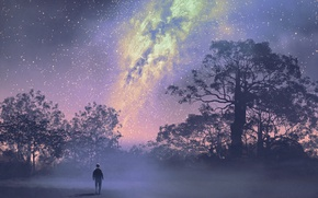 Picture The sky, Stars, Trees, People, Art