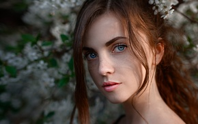 Picture spring, freckles, Kate, the beauty, Katyusha, George Chernyadev
