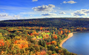 Picture autumn, forest, shore, panorama