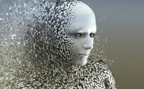 Picture effect, gray, destruction, Human Body