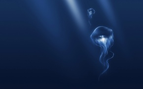 Wallpaper blue, Medusa