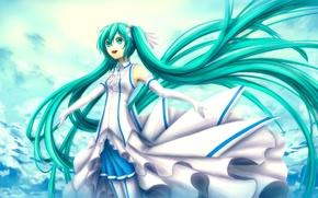 Picture the sky, girl, clouds, hair, art, Hatsune Miku, Vocaloid, Vocaloid, Hatune Miku