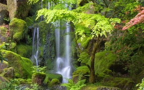 Picture trees, stones, waterfall, Oregon, Portland, Oregon, Portland, Japanese Gardens, Japanese gardens