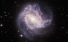 Picture galaxy, constellation, spiral, Hydra, NGC 5236, M 83, The Southern Pinwheel