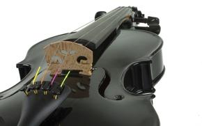 Picture music, instrument, Black Violin