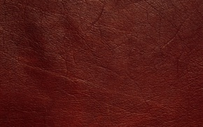 Picture texture, leather, veins, animal texture, background desktop, dressing