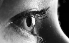 Wallpaper eye, black and white, closeup