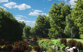 Picture forest, clouds, flowers, nature, stream, stones, the bushes