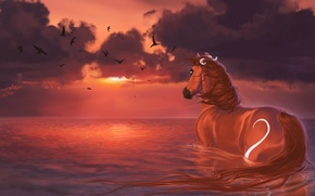 Wallpaper water, clouds, sunset, birds, horse, painting, sunset, water, horse, Burning sky
