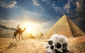 Wallpaper sand, the sky, the sun, clouds, bird, desert, skull, camel, Egypt, pyramid, Bedouin, nomad, Cairo