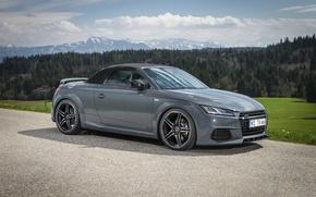 Picture Roadster, Design, Grey, ABBOT, Audi TT