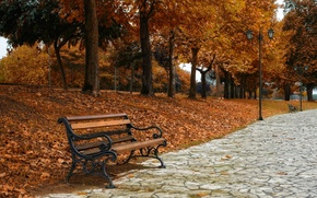 Picture autumn, the city, bench