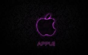 Picture apple, logo, texture, pink, hi-tech