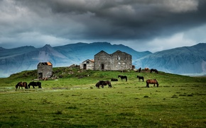 Picture house, grass, storm, mountains, horses, farm, ruin