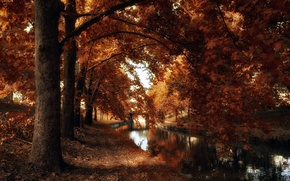 Picture autumn, the city, channel