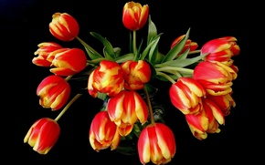 Picture flowers, orange, yellow, red, bouquet, tulips, vase, black background