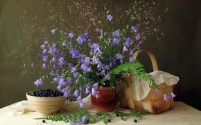 Picture leaves, flowers, berries, blueberries, plate, still life, bells, basket, fern