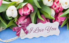 Picture note, Tulips, I love you, I love you, tulips, bow