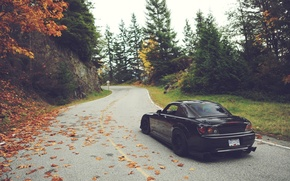 Picture road, autumn, leaves, trees, Honda, S2000