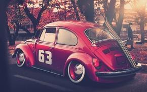Picture autumn, tuning, ski, beetle, volkswagen, Volkswagen, beetle