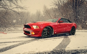 Picture red, tuning, snow, photoshop, Gt500, Kerem çayci