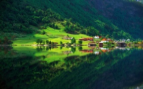 Wallpaper greens, forest, summer, lake, reflection, home, Nature, village