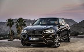 Picture car, jeep, SUV, rechange, BMW X6, xDrive50i