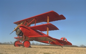 Picture the sky, retro, the plane, Triplane, Fokker Dr. I