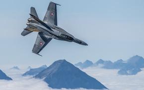 Picture flight, Hornet, FA-18