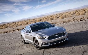 Picture Mustang, Ford, horizon, Ford, Mustang, the front, Muscle car, Muscle car