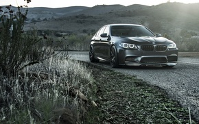 Picture road, grass, black, bmw, turn, BMW, black, front view, roadside, f10