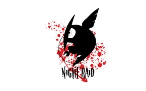 Picture Akame ga kill, akame GA kill, night raid