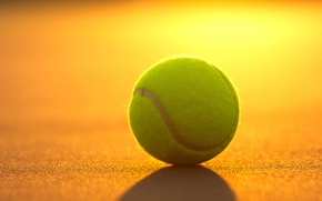 Picture sunset, sport, the ball, tennis, court, inventory