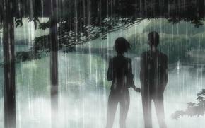 Picture trees, Park, rain, two, the shower, Kotonoha no Niwa, Garden of fine words, The Garden …