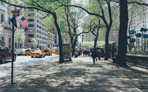 Picture USA, United States, trees, New York, Manhattan, NYC, New York City, street, people, Central Park, …