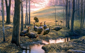 Picture autumn, forest, stream, hill, painting, autumn leaves, turkeys, Callin Em Out, Greg Alexander